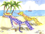 Beach-Cats