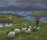 Irish Shepherd