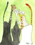 Matrimonial-Cats