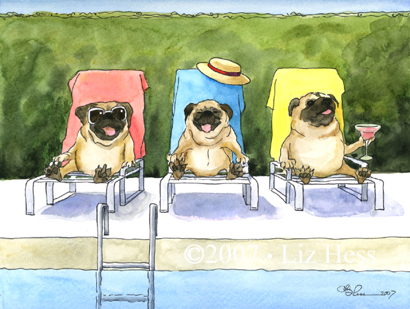 Poolside-Pugs
