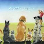 Canine-Spectators