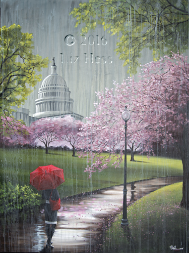 Cherry-Blossoms-At-The-Capitol